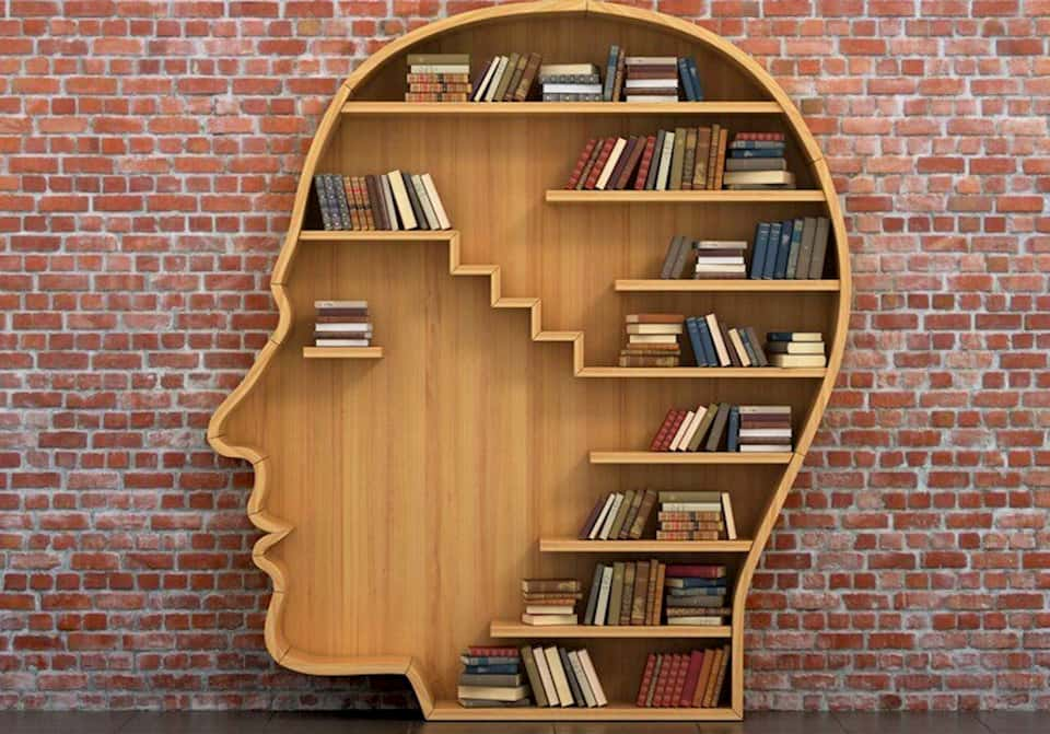 Por que os livros ainda importam?