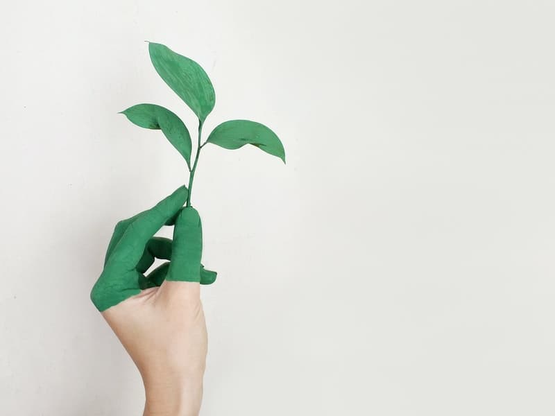 Conscientização - Meio Ambiente